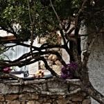 Sardegna LEa di Lavru Residence Appartamento 10 057