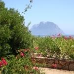Sardegna LEa di Lavru Residence Appartamento 10 074