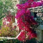 Sardegna LEa di Lavru Residence Appartamento 2 0004