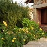 Sardegna L'Ea di Lavru Residence  Appartamento 6 009.jpg