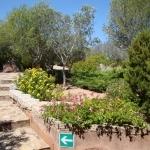 Sardegna L'Ea di Lavru Residence  Appartamento 6 011.jpg