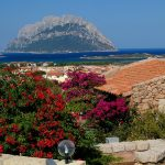 Sardegna LEa di Lavru Residence Esterni 001