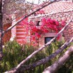 Sardegna LEa di Lavru Residence Esterni 008