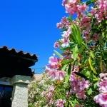 Sardegna LEa di Lavru Residence Esterni 015