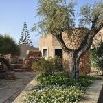 Sardegna LEa di Lavru Residence Esterni 043