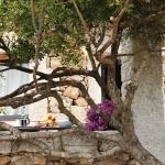Sardegna LEa di Lavru Residence Esterni 055