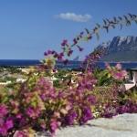 Sardegna LEa di Lavru Residence Esterni 071
